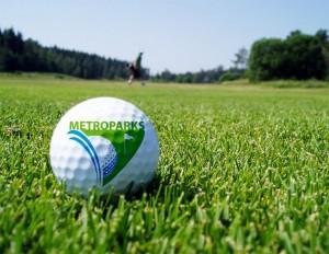 GolfBall-768x593